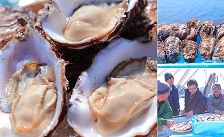 石巻発のブランド牡蠣 水魂(みずたま)
