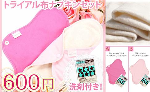 布ナプキン セット トライアル・洗剤付きの写真