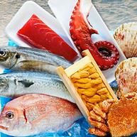 旬の魚介類の贅沢な詰め合わせ。2回目は贈りものとして購入する人多数