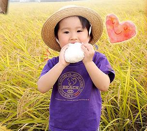 コシヒカリ 玄米30kg福島県中通り産