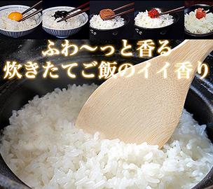 コシヒカリ白米10kg 福島県中通り産