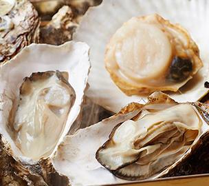 浜焼きセット(殻付き牡蠣×大8個、殻付き帆立特大4枚)