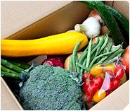 野菜ソムリエが厳選、旬の野菜セットの写真