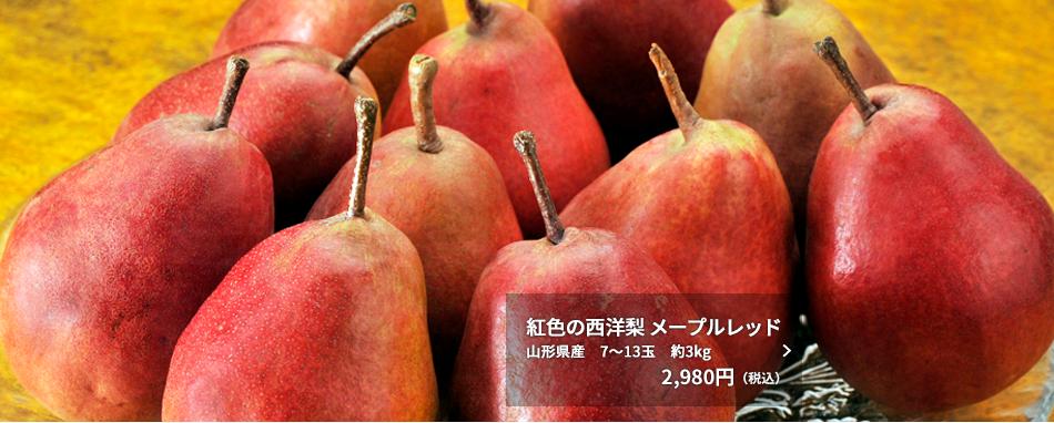 紅色の西洋梨 メープルレッド 山形県産 7~13玉 約3kg 2,980円(税込)