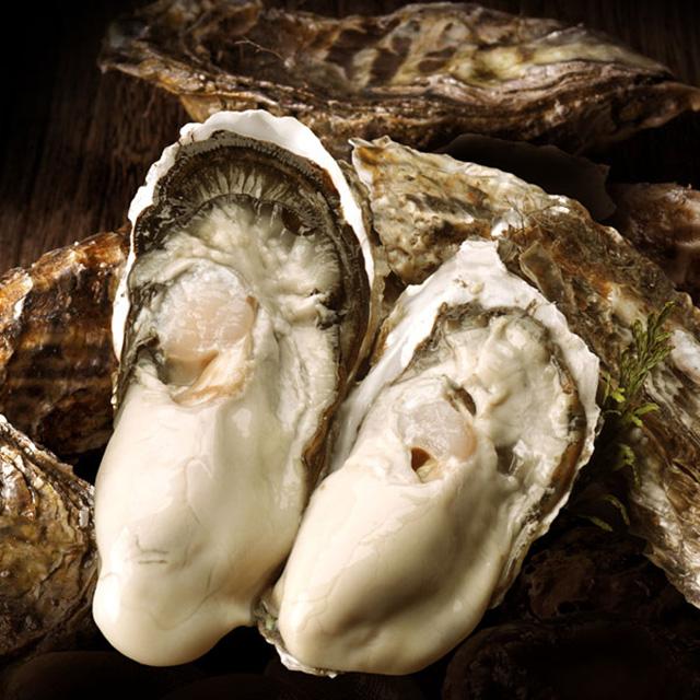 濃厚ミルク牡蠣の写真