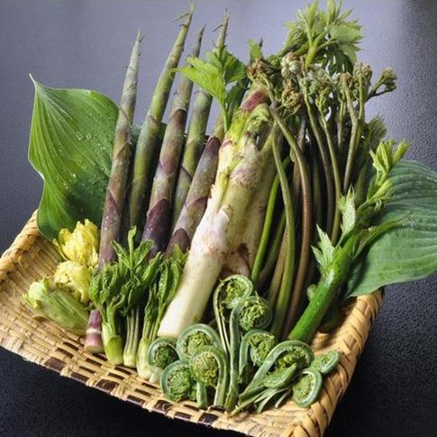 山菜天ぷらセットの写真