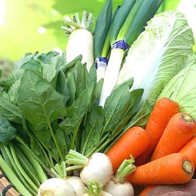 九州有機野菜セットの写真