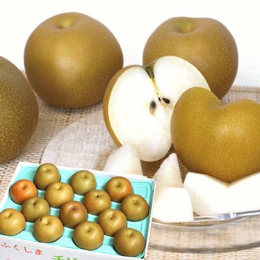 「たっぷりお得 和梨」 10kg