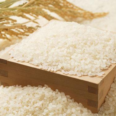 会津産天のつぶ 玄米 30kg