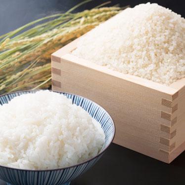中通り産コシヒカリ無洗米20kg
