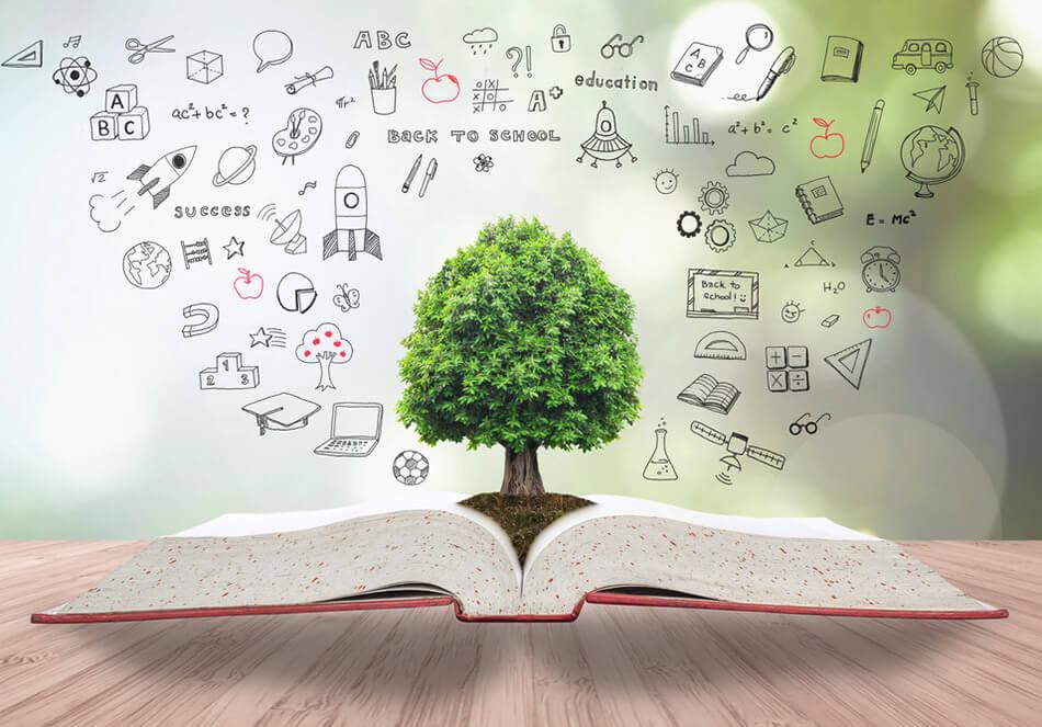 サステナビリティに取り組む企業の認証 Bコーポレーション(外部サイト)