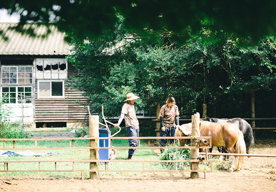 元牧場ということで馬も育てているうさぎ農園の月野陽さん、亜衣さん