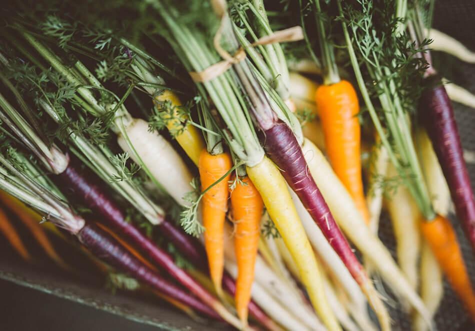 西洋野菜の特徴の一つに、そのカラフルさがある(月野さん写真提供)