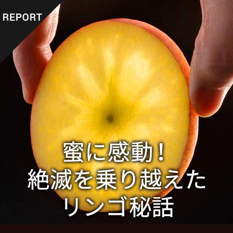 蜜に感動!絶滅を乗り越えたリンゴ秘話