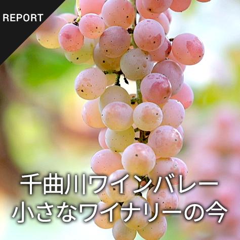 千曲川ワインバレー 小さなワイナリーの今