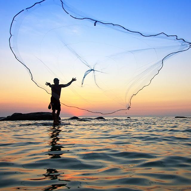 2048年、私たちの食卓から魚が消える!? 伝えていきたい海の恵みの写真