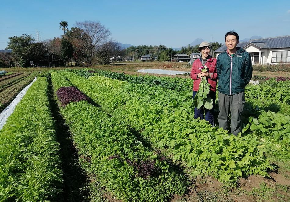 有機野菜が育つ畑に立つ深瀬さん
