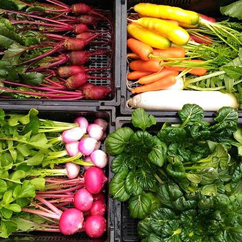 人も自然の中にいる。<br>オーガニックの野菜を食べよう