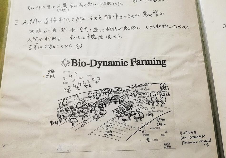 雅子さんのバイオダイナミック農法についての学習ノートより
