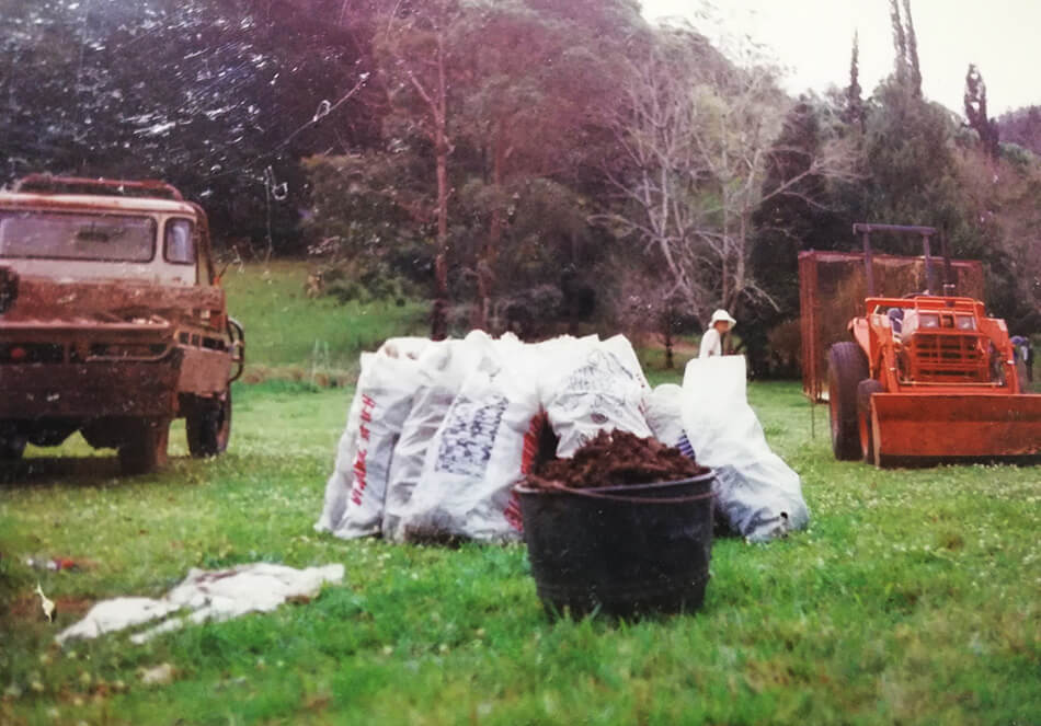 バケツいっぱいになった500番と袋の中にはからっぽになった角が入っています。これを畑にまきます
