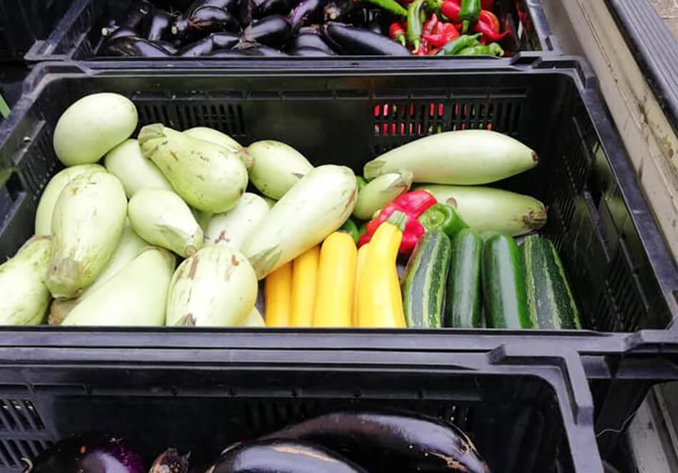 「共存共栄」の野菜たち