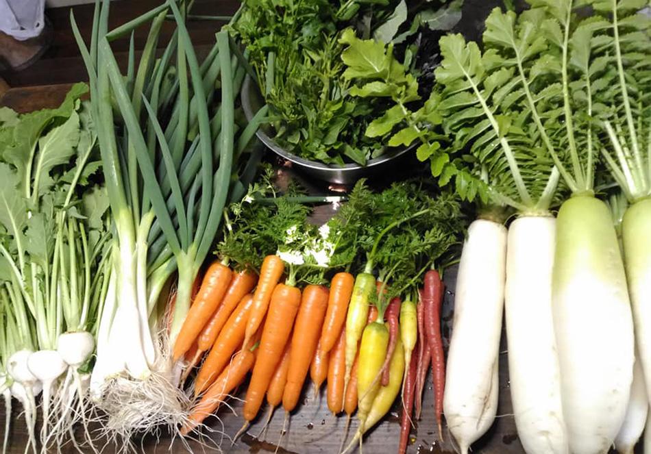 有機野菜本来の力で体に優しいリセット食