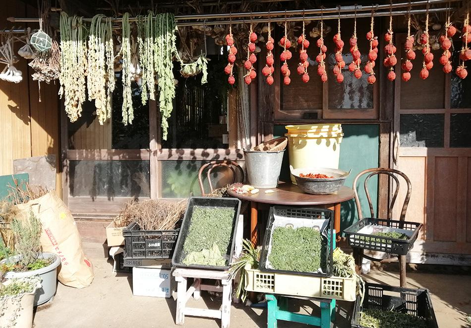 軒先に干した野菜