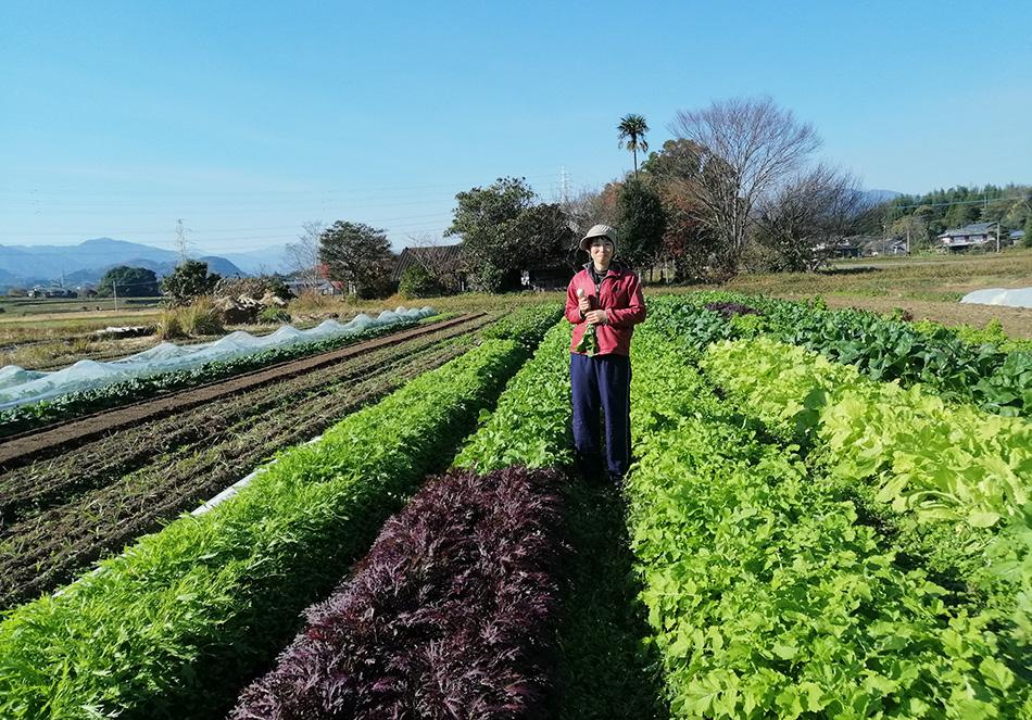 生物多様性だからできる持続可能な農業