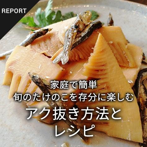 家庭で簡単 旬のたけのこを存分に楽しむ アク抜き方法とレシピ