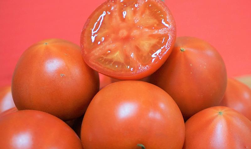 高糖度トマト「ブリックスナイン」
