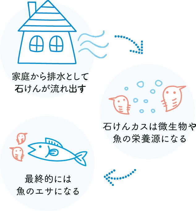 1.家庭から排水として石けんが流れ出す 2.石けんカスは微生物や魚の栄養源になる 3.最終的には魚のエサになる