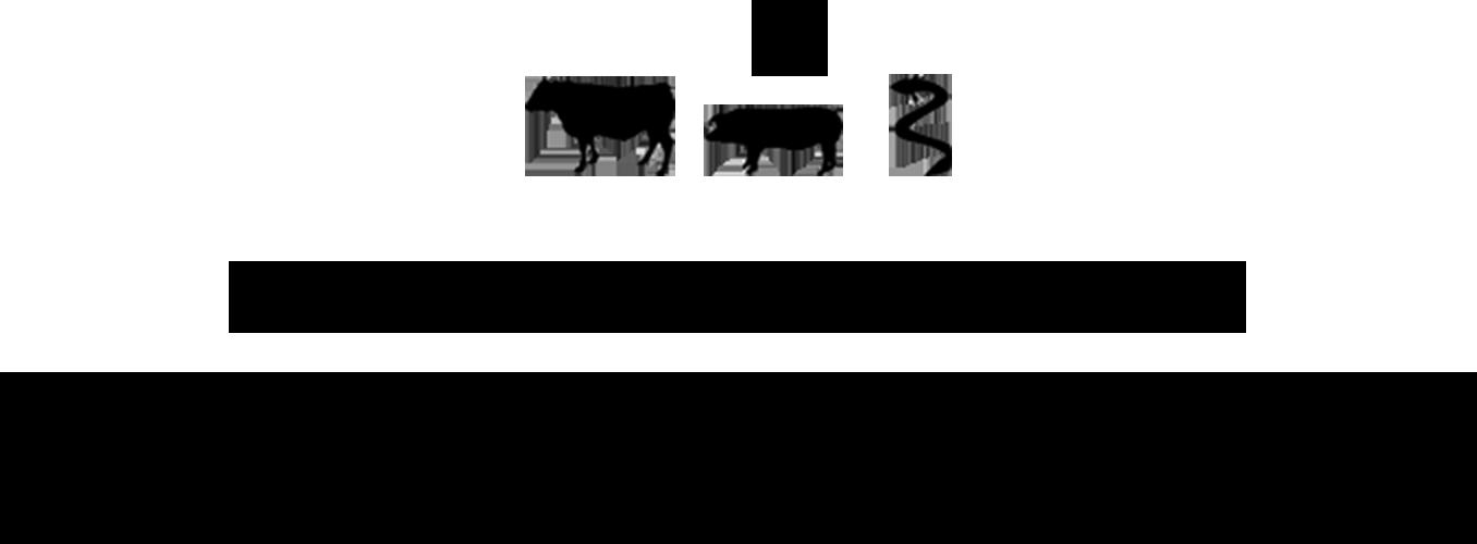 志布志の自然と涌水が生み出す薩摩のおいしい3つの黒