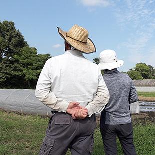 画像:畑を眺める山口雅行さんご夫婦