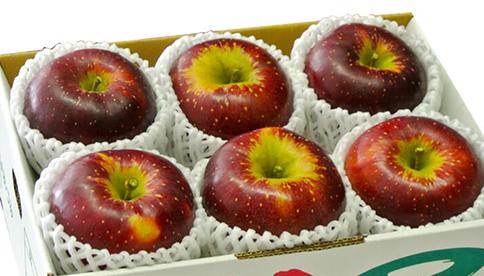 安曇野産リンゴ品種リレー