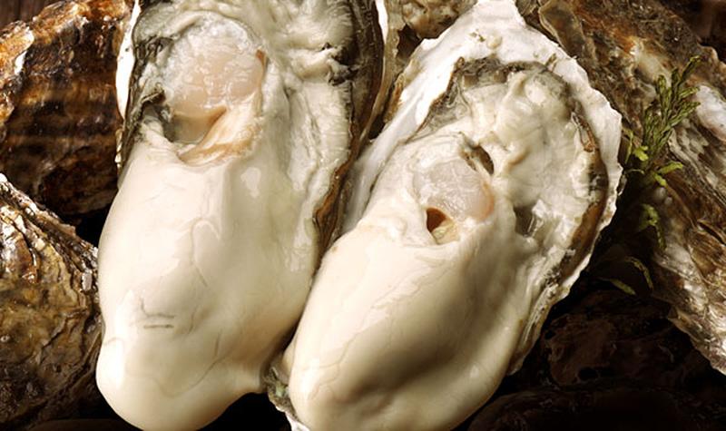 仙鳳趾産 濃厚ミルク牡蠣