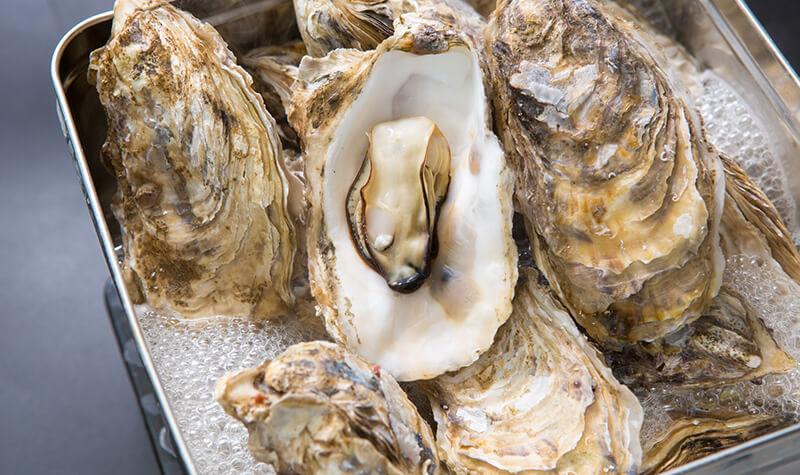 新昌ブランド 殻付き生食牡蠣