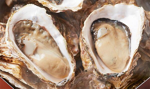 岬焼牡蠣産直セット