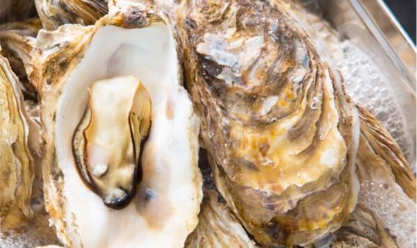 女川黄金牡蠣