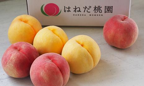 羽根田さんの「完熟桃」