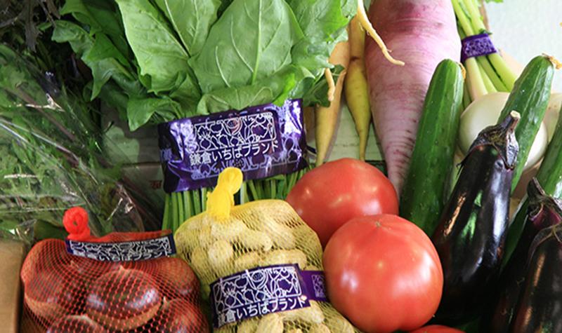 鎌倉市場ブランド野菜