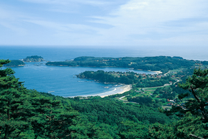 写真:大島の風景