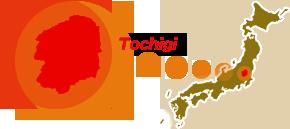 栃木(関東ブロック)