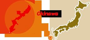 沖縄(九州・沖縄ブロック)