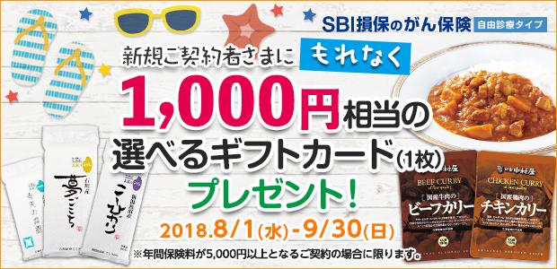 がん保険キャンペーン(SBI損保)