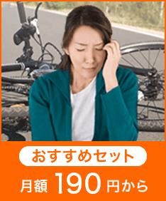 損害賠償プラン おすすめセット190円から
