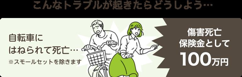 こんなトラブルが起きたらどうしよう…自転車にはねられて死亡…傷害死亡保険金として100万円※スモールセットを除きます。