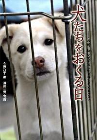 『犬たちをおくる日 この命、灰になるために生まれてきたんじゃない』今西 乃子(著),浜田 一男(写真)/金の星社
