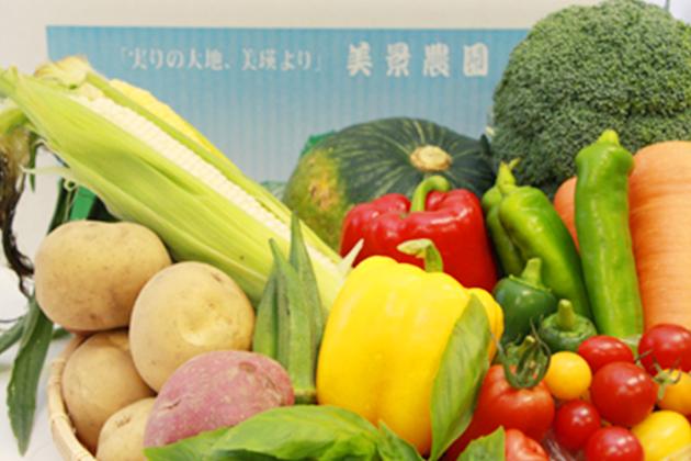 野菜詰め合せ