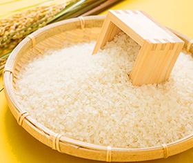 米・パン・麺類