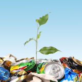 ボランティア、環境問題、国際協力